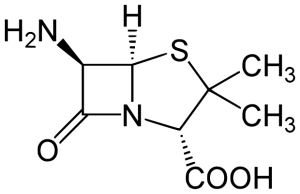 6-Aminopenicillanic acid